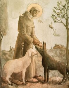 Francis by Fulvio Pennacchi Catholic Saints, Patron Saints, St Francisco, Patron Saint Of Animals, St Clare's, Christian Religions, Religious Art, Religious Pictures, Francis Of Assisi