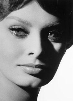 sophia loren pin ups   Close-up of Sophia Loren, photo by Sam Lévin, ...   hollywood icons ...