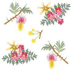 'desert flowers / Wüstenblumen' by Sascha Kläger Desert Flowers, Illustration, Deserts, Sheep, Friends, Patterns, Postres, Illustrations, Dessert