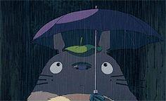 Somebody Likes the Sound of Rain | Totoro | My Neighbor Totoro | Miyazaki | Studio Ghibli | (gif)