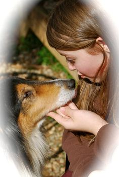 "Mission Statement:  ""Collie Rescue of the Carolinas is a non-profit 501 C (3) organization dedicated to the safety and welfare of purebred rough and smooth collies. Our secondary goal is the welfare of the canine species and the education of people and families that interact with them. To this end we provide food, shelter, transportation, and medical treatmen to collies in our care; and education to interested persons."""