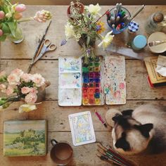 """this looks like a little piece of heaven.. """"work in progress, shot from above, falls beyond frame of photo, cat"""""""
