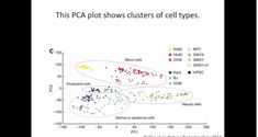 StatQuest: PCA clearly explained