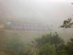 Monteverde Cloud Forest Train , The most beautiful cloud forest in Costa Rica