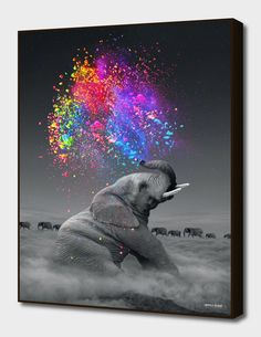 cloud elephant Cigarettes Animal DIY Digital Painting By Number Modern Wall Art Canvas Painting Unique Gift Room Decor – Garden & Home Elephant Colour, Elephant Love, Colorful Elephant, Happy Elephant, Elephant Artwork, Elephant Trunk, Elefant Wallpaper, Beautiful Creatures, Animals Beautiful