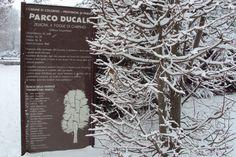 Parco Ducale Colorno PR Italy http://www.reggiadicolorno.it/giardino-reggia-colorno.php