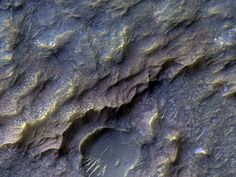 Dragon Scale of Mars