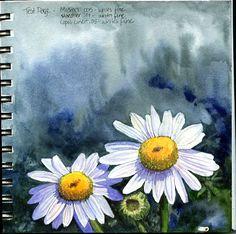 Laure Ferlita http://paintedthoughtsblog.blogspot.com/2011/09/stillman-birn-sketchbook-review.html
