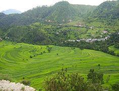 Char Dham | Yatra Package | Uttarakhand