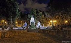 Sereia Garden by night