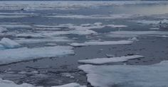 Russia, U.S. Sign Fishing Ban in Arctic as Sea Ice Melts
