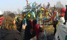 Zwyczaj topienia Marzanny/Marzanioka i wnoszenia gaika/goika do wsi - Miasteczko Śląskie. Badania terenowe w projekcie 'Rok obrzędowy z Wikipedią', dotacja MKiDN i Urzędu Marszałkowskiego Mazowsze. #Śląsk #Wikipedia #ritual #heritage #marzanna #mara #springrituals #spring #gaik