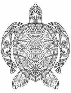 Adult Zentangle Zen Turtle Coloring Pages Printable And Book To Print For Free Find More Online Kids Adults Of