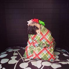 """I am Christmas."""