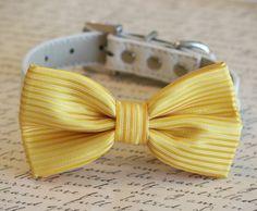 Yellow Dog Bow Tie, Pet Wedding accessories, Spring wedding, Dog Bow tie, Dog Lovers, Yellow wedding
