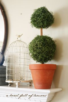 This lady has so much on her site! This one is how to make your own topiaries. I love these things and they always cost so much!