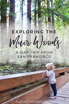 Quick tips to make the most of a Muir Woods day trip from San Francisco. #familytravel #sanfrancisco #california // Family Travel | Travel with Kids | SF Bay Area | California Road Trip | Hiking Trails | Outdoor Adventures | US Travel | USA | United States | Northern CA #ustravel
