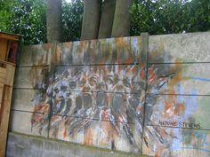 Antoine Stevens © Street Art #graffiti