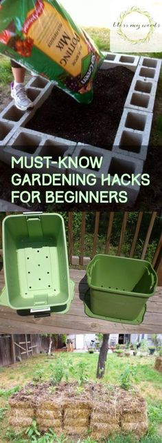 Must-Know Gardening Hacks for Beginners