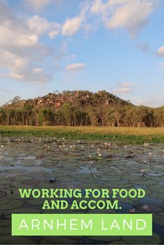 The best unpaid job ever? Working for food, accommodation and most importantly tours in Australia's Arnhem Land