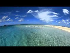 relaxing nature sound 55min