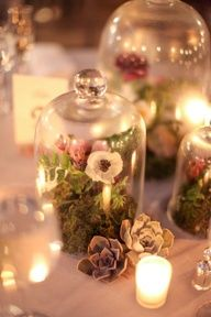 Terrariums as centerpieces. Love this idea..reminds me of a scene out of Mid Summers Night Dream