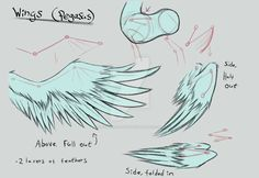 Decided to make this in order to better understand and draw more realistic pegasi wings for my comic. If you'd like you can use this aswell to practice drawing wings too! If you have an artstyle th. Drawing Techniques, Drawing Tips, Drawing Reference, Drawing Stuff, Drawing Lessons, Drawing Ideas, Colorful Drawings, My Drawings, Mlp Wings