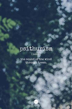Word of the Day: Psithurism. The sound of the wind through trees.