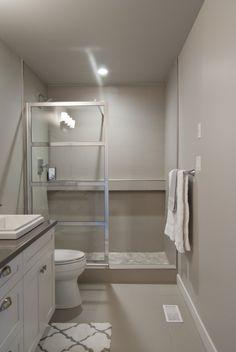 Master Bathroom Alcove Shower with Glass Panel Door