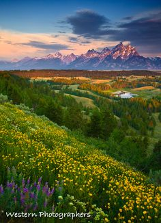 Spring in Grand Teton National Park, Wyoming (by Western Photographers)