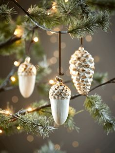 Six White Pinecones & Acorns