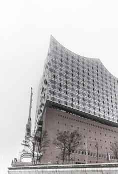 Elbphilharmonie im Nebel - Sugar Ray Banister