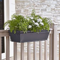 Shop Zinc Rail Planter Box and Hook. Clean-lined planter squares off in galvanized-finished iron, bringing a modern edge to outdoor plantings. Planters can stand alone or hang on window or deck frame combined with our matching rail hook.
