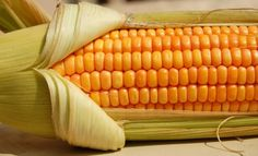 It's National Corn on the Cob Day! Show us your favorite way to eat corn on the cob! Get Lean, Growing Vegetables, Fruits And Vegetables, Popcorn Seeds, Gmo Facts, The Husk, Network For Good, Frozen Corn, Make Good Choices