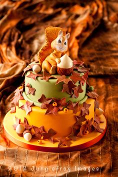 Autumn cake shot for Mjam Taart. Not pumpkin but it is autumn and orange and it will give you an idea