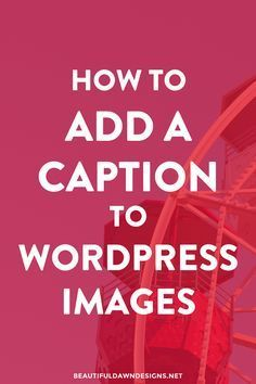 In this tutorial you'll learn how to add a caption to your WordPress images. Captions are a great way to summarize your images for your readers. via @tiffany_griffin