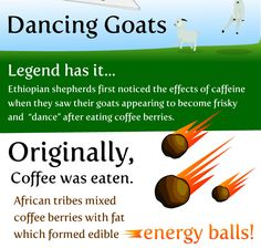 Coffee Fact: Did you know that originally was eaten? African tribes mixed coffee berries with fat to form an energy ball. Coffee Cream, Coffee Type, I Love Coffee, Espresso Coffee, My Coffee, Coffee Drinks, Funny Coffee, Chocolate Covered Coffee Beans, Pause Café