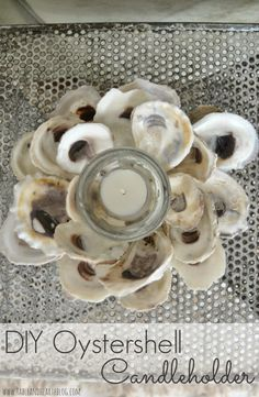A great way to use all those collected shells from the beach!!