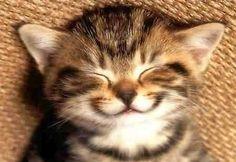 Y como sea, siempre, sonreí. Que la semana que viene va a ser mucho mejor que esta que pasó