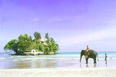 taprobane island, sri lanka