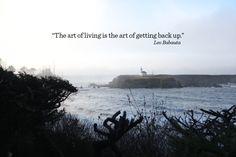 Ali Edwards   Blog: The Art Of Living By Leo Babauta