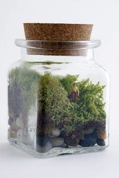 Terrariums with tiny people inside! THis one is called Le Petit Singularite and has a male figure inside. Prince Charming? Maybe ;)