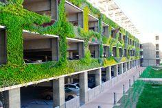 A grande parede viva melhora a qualidade do ar e faz os motoristas repararem mais nas plantas do que nas rodas.