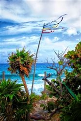 Cozumel - view from Coconuts