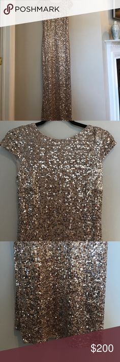 Badgley Mischka Sequin Gown This dress was purchased in the clearance section due to minor Sequin fall out on the bottom. You can barely notice it when worn. I am selling it because I do not fit in it anymore. Badgley Mischka Dresses Wedding