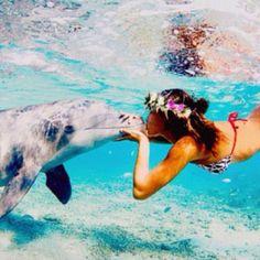 kiss a dolphin!
