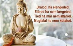 If there is any religion that could respond to the needs of modern science, it would be Buddhism. Best Buddha Quotes, Buddhist Quotes, Motivational Poems, Positive Quotes, Osho, Karma, Buddha Jayanti, Quotes For Whatsapp, Better Alone