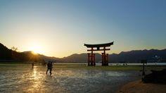 広島 厳島神社 大鳥居:写真・映像館/ひろしま観光ナビ
