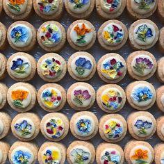 2017.1.21 こんばんは 今日も寒い中ご来店ありがとうございました☺︎ 明日も通常営業です 今日も販売した、写真のお花と甜菜糖のアイシングクッキーは明日も販売いたします また今日から始まった「お花のラムレーズンブラウニー」はあっと言う間に完売となりましたが明日もご用意しております 明日もお花、焼菓子、ケーキなどなどたくさんご用意してお待ちしています! (cotito ハナトオカシト)
