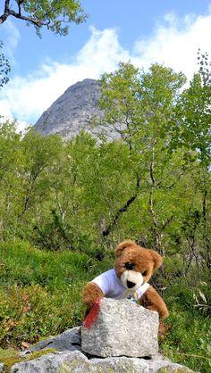 Der Urlaubär von ferienwohnungen.de auf Tour in Norwegen, Wandern, Hiking, Trekking, Backpacker, Norway ...